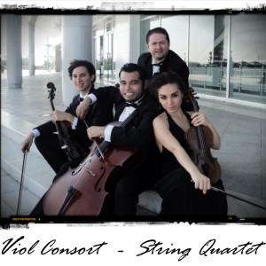 Viol Consort String Quartet - String Quartet in McAllen, Texas