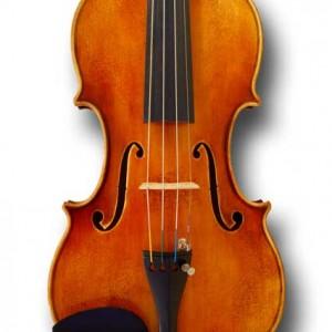 Violinist & Lux Ensemble - Violinist in San Diego, California