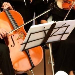 Watkins Strings - Classical Duo in Paducah, Kentucky