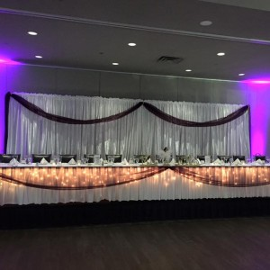 Weddings Unlimited by Terri - Linens/Chair Covers in Rockford, Illinois