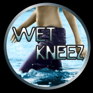 Wet Kneez Band - Indie Band / Dance Band in Jacksonville, Florida