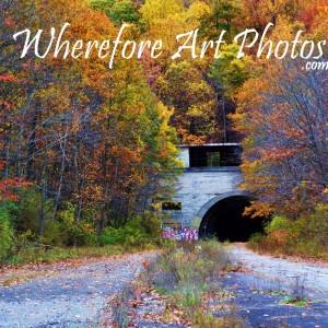 Wherefore Art Photos - Photographer in Downingtown, Pennsylvania