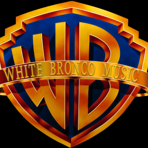 White Bronco - Cover Band / 1990s Era Entertainment in Angola, New York