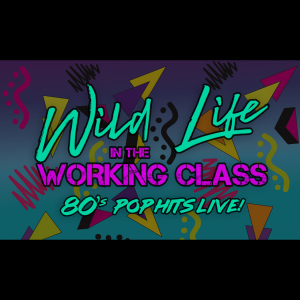 Wild Life in the Working Class - Cover Band / Pop Music in Huntsville, Alabama