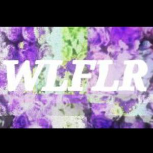 Wlflr - Alternative Band in Jenks, Oklahoma