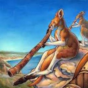WompWompWomp - Didgeridoo Player in Golden, Colorado