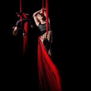 Circus Building Entertainment - Aerialist / Acrobat in Charleston, South Carolina