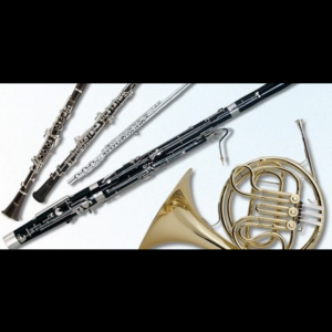 Woodwind Quintet - Classical Ensemble in Taunton, Massachusetts