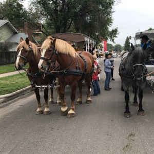 Wyoming Carriages - Horse Drawn Carriage in Cheyenne, Wyoming