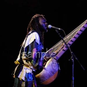 Youssoupha Sidibe Kora Player - World Music / Educational Entertainment in Amherst, Massachusetts