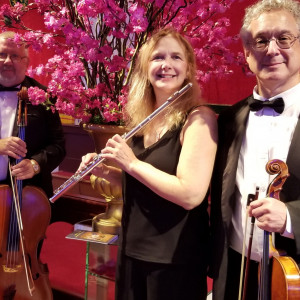 Princeton Music Connection - String Trio in Princeton, New Jersey