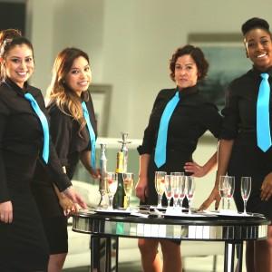 Ziva Staffing LLC - Bartender in Miami, Florida