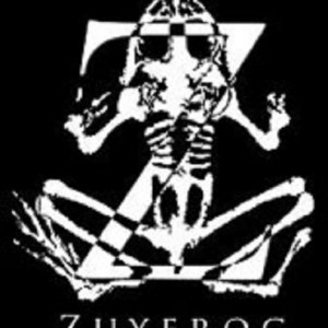 Zuyfrog Media - Videographer in Littleton, Colorado